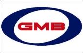GMB Rulman ve Kitleri